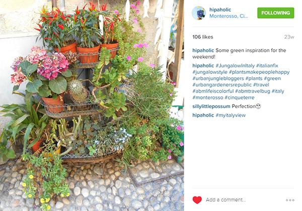 screenshot-www.instagram.com 2016-03-07 08-50-54